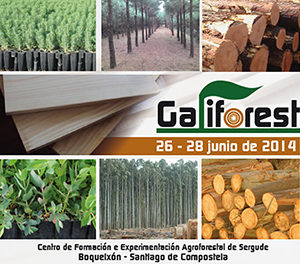 galiforest-300x264